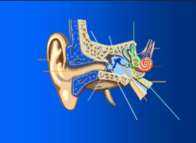 the-early-years-ear-pic-hearing-injury-image-min